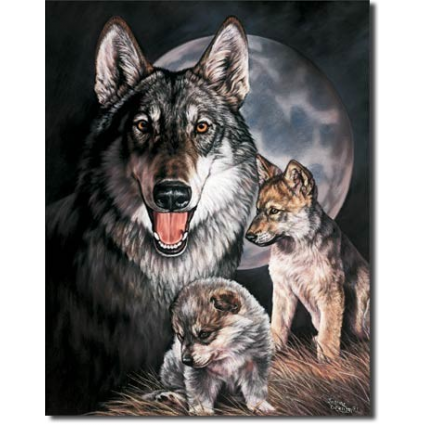 The Wolf Experience By The Illustrators Joanne At Ivey's Gifts And Decor Room Decor