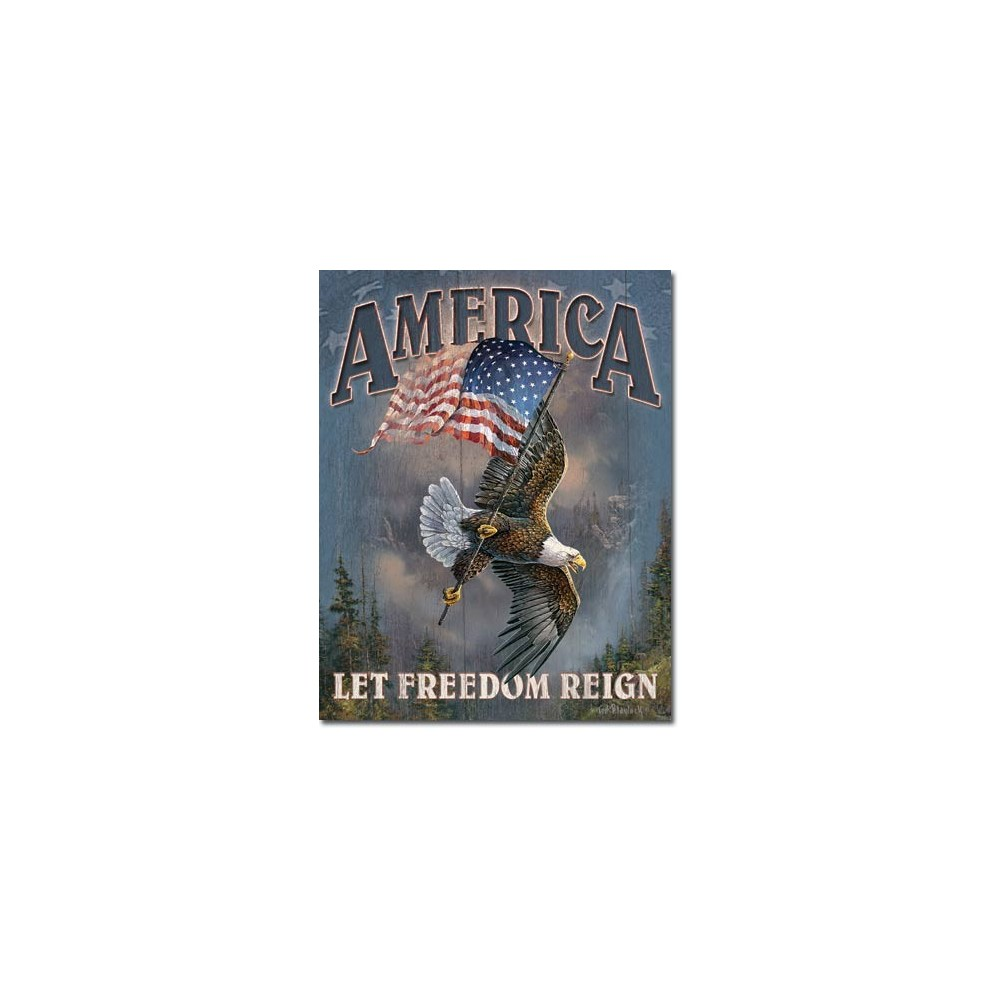 6c0903023 American Pride Let Freedom Reign Tin Sign Made In USA Free Shipping Ivey's  Gifts And Decor