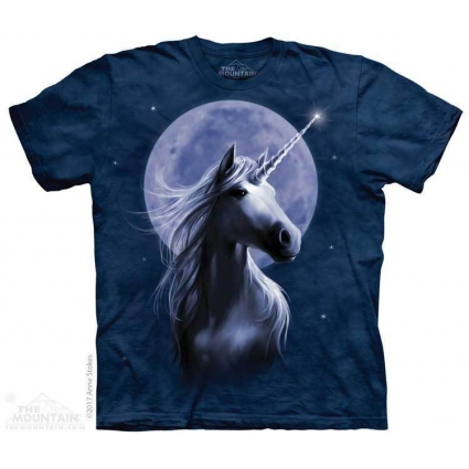 The Mountain Artwear Artist Anne Stokes Starlight Unicorn Youth Shirt Ivey's Gifts and Decor